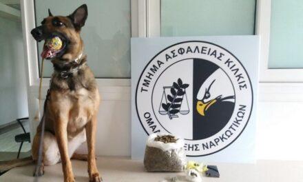 Qeni i zbulon drogën shqiptarit në këmbët metalike të divanit