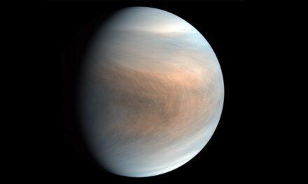 Zbulimi i madh: A ka jetë në retë e planetit Venus?