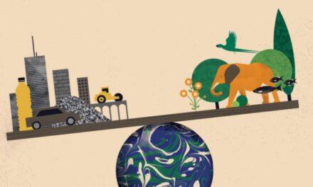 2020 shënon pikën kur materialet e bëra nga njerëzit tejkalojnë të gjitha gjërat e gjalla në tokë