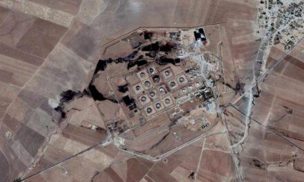 Si ndihmon Google Earth për të luftuar krimet ekologjike