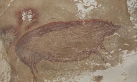 Vizatimi më i vjetër i një kafshe, 45.500 vjet më parë: derr a çfarë?