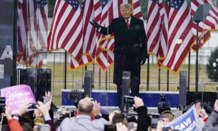 """Lëvizja e Trump: Kalon në Parler, Twitter-in e së djathtës pa """"asnjë kontroll"""