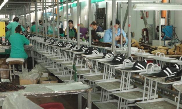 Produktiviteti i ulët, shtohet numri i punësuarve më pagë minimale