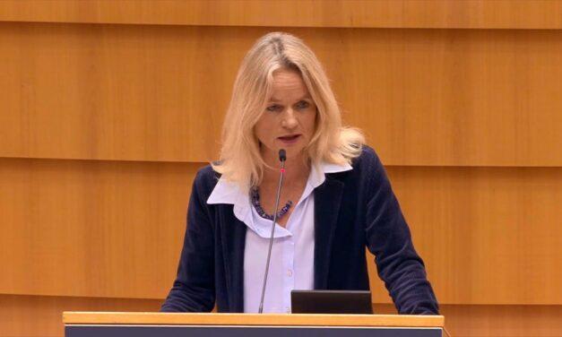 Raportuesja për Kosovën në PE: Dokumentet 'non-papers' janë hartuar në Moskë