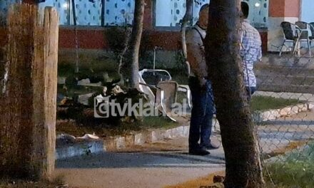 4 të vrarë e 2 të plagosur pas një përplasje me armë në Velipojë