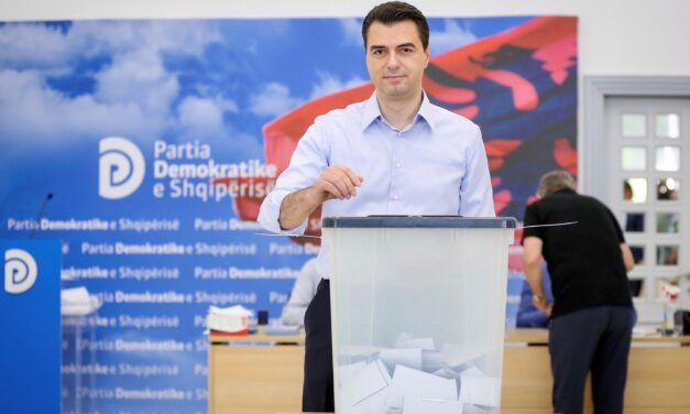 Basha rizgjidhet kryetar i Partisë Demokratike