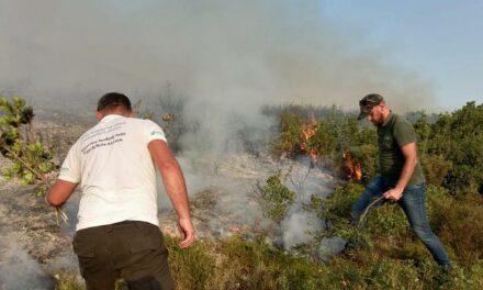 Zjarri në Karaburun, Peleshi: Pika kritike mbetet kufiri me Parkun e Llogarasë, dyshohet për zjarrvënie të qëllimshme